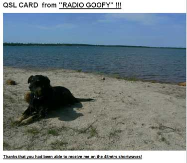 qsl radio Goofy pirate sw CZ